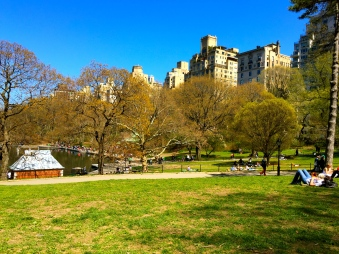 penthouse park