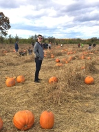 pumpkin-in-patch